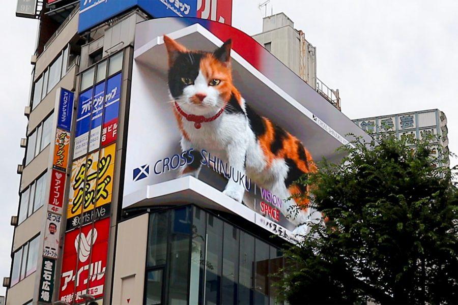 今話題の新宿駅の大型デジタルサイネージに現れる3Dの巨大猫